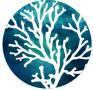 Blue Ocean Civil Consulting